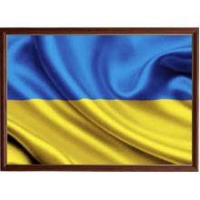 Монеты Украины. Ходячка