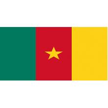 Монеты Камеруна