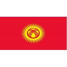 Монеты Кыргызстана (Киргизии)